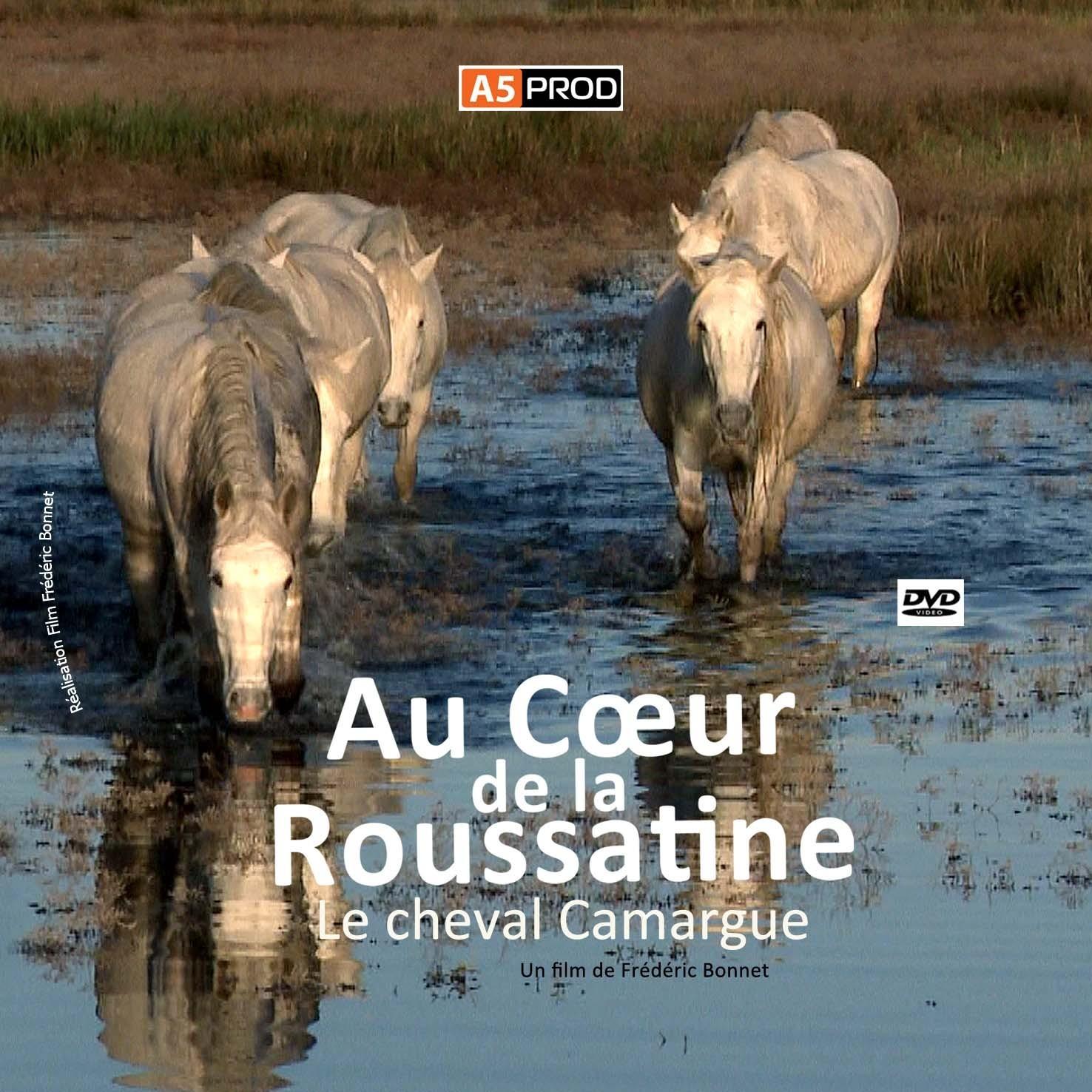 Au_coeur_de_la_roussatine